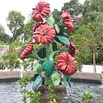 Ugly hibiscus fountain