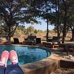 Shindzela Tented Safari Camp