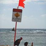 Photo de Poipu Beach Park