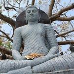 Bodhi tree and status