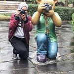 Teddy Bear Museum Jeju Foto