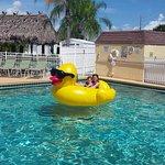 Billede af Gulf View RV Resort