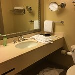 Motel style bathroom, nothing luxurious
