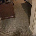 Foto de Sandman Hotel & Suites, Calgary Airport