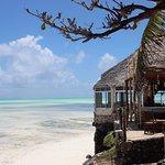 Coral Rock Zanzibar Foto
