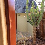"View -Hornbil Rondavel towards ""Bush Bathroom"" and Outdoor Shower."