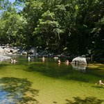 Mossman Gorge. Beautiful pool we didn't have time to swim in.