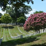 Arlington National Cemetery August 2016