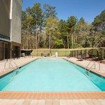 Foto de Fairfield Inn & Suites Columbia Northeast