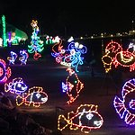 Festival of Lights -- sea creatures by the bay