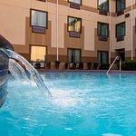 Best Western Galleria Inn & Suites Foto
