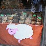 Sheep cheeses waiting for customers