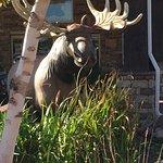 Foto di Stoney Creek Hotel & Conference Center  - Columbia