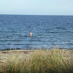 Auch im November wird die Ostsee nach der Sauna genutzt.