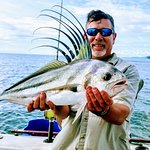 Roosterfish!