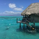 Foto di Sofitel Moorea Ia Ora Beach Resort