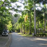 entering the tourist park