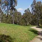 Harry Pottage Reserve