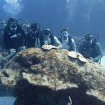 Dive Abaco 2016