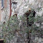 Photo of La Bottega di Duddova