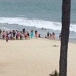 Sea turtle on beach to lay eggs while security and conservation officers ensure it is not distur