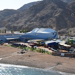 Foto de The Orchid Hotel and Resort Eilat