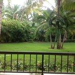 Photo de Paradisus Palma Real Golf & Spa Resort