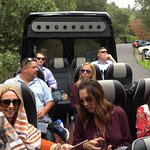 Safari type experience in the wilds of NAPA!