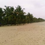 Marari Beach Photo
