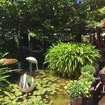 Casa Bianchi gardens