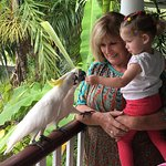 The manager, Pam, with our daughter feeding the cockatoos.