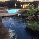 Bar, Pool and beginning of Koi Pond
