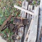 Acorn Acres Lodging Foto