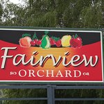 Fairview Orchard
