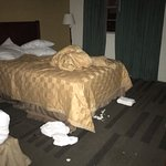 Photo de Midtown Hotel New Orleans
