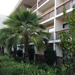 Foto de BEST WESTERN PLUS Thousand Oaks Inn
