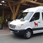 Red dog wine tours van at winery