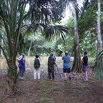 Foto de Belize Botanic Gardens