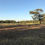 Settlers Rest Farmstay