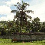 Photo de Indah Homestay