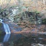 Hornsbeck Creek Falls