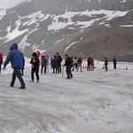 Columbian Glacier.