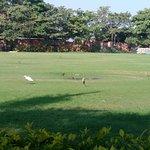 Vijayshree Resort & Heritage Village Foto