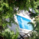 Foto de Mango Tulum Hotel