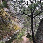 The Drip Gorge Foto