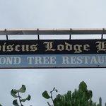 Photo of Almond Tree Restaurant