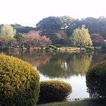 Photo de Shinjuku Gyoen National Garden