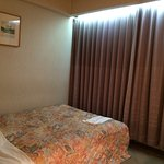 Photo of Royal Okayama Hotel