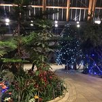 Foto di The Botanical Gardens