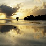 The Sands At Chale Island Foto